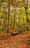 Old bench in the autumn park Royalty Free Stock Photography