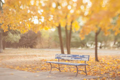 Old bench in the autumn park. Royalty Free Stock Images