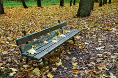 Old bench in autumn park Royalty Free Stock Photos