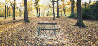Old bench in autumnal park Royalty Free Stock Photography
