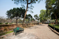 Old bench in a beautiful botanical park with bench Royalty Free Stock Image