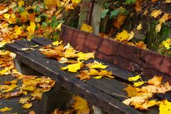 Old bench Royalty Free Stock Images