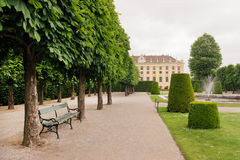 Old bench in green park near the Schonbrunn Palace, Vienna. Stock Photos