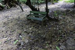 Old bench in the jungle Royalty Free Stock Image