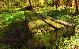 Old bench 1 Stock Photo