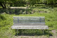 Old bench in the park at summer. Vintage retro bench stock photography