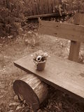 An old bench with a small flower pot Stock Photo