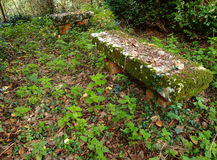 Old bench Royalty Free Stock Image