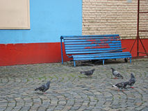 Old bench on a wall. With pigeons walking around stock image