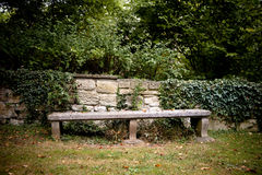 Old Bench with wall and ivy Stock Images