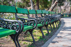 Empty benches in park Stock Images