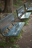 Old benches in an urban park Stock Image