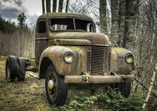 Old Betsy. Old truck in the woods Stock Photography