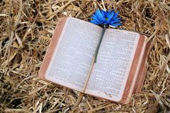 Old Bible in Hay Royalty Free Stock Photo