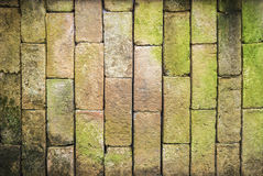 Old bick wall background stock photography