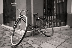Free Old Bicycle Royalty Free Stock Images - 12467989