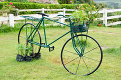 Free Old Bicycle Royalty Free Stock Photography - 35261937