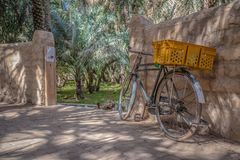 Old bicycle in Al Ain Oasis, United Arab Emirates royalty free stock photos
