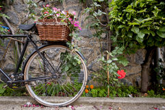 Old bicycle with basket Stock Photo