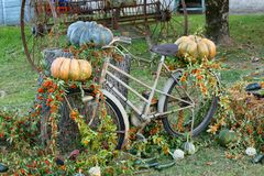 Old Bicycle Decorated with Flowers and Vegetables stock image