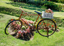 Old bicycle with flowers basket Royalty Free Stock Image