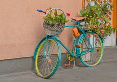 Old bicycle with flowers and a basket by the wall Stock Photos