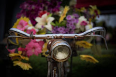 Old bicycle and flowers Stock Photography