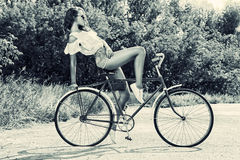 Old bicycle Stock Image