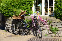 Old bicycle planted with flowers Royalty Free Stock Image
