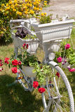 Old bicycle with potted flowers Stock Images
