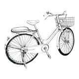Old bicycle - sketch illustration hand drawn Stock Photos