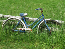 Old bicycle in tall grass. Royalty Free Stock Image