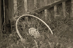 Old bicycle wheel in the grass Royalty Free Stock Photos