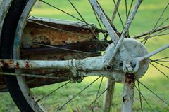 Old bicycle wheel on a green background. Stock Image
