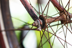 Old bicycle wheel Stock Image