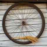 Old bicycle wheel Royalty Free Stock Images