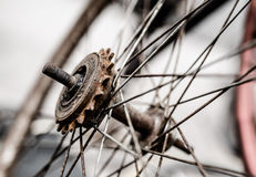 Old bicycle wheels. A bicycle repair shop old bicycle wheels Royalty Free Stock Images