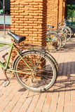 Old bicycles in park on sunny Stock Photos