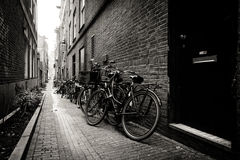 Old bicycles parked on a narrow street in Amsterdam. Black and white. Netherlands Royalty Free Stock Photography