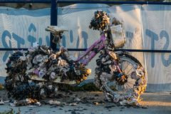 Old bicycles recovered from the sea covered with oysters and mus Stock Image