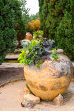 Old big clay pots with flowers, Balchik, Bulgaria Royalty Free Stock Image