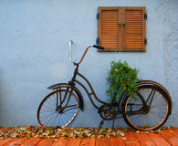 Old bike. An old bicycle with a plant on it Royalty Free Stock Images