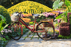 Old bike in the garden Stock Photography