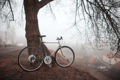 Old bike near the tree Royalty Free Stock Photos