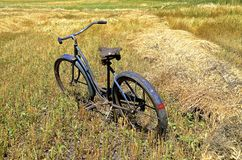 Old bike parked in a wheat field Royalty Free Stock Images