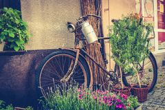 Old bike. Old rusty bicycle as decoration Stock Image