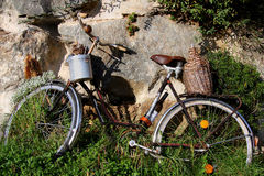 Old bike Royalty Free Stock Image