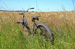 Old bike in wheat wheat field Royalty Free Stock Image