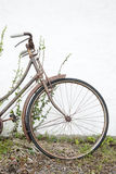 Old Bike Royalty Free Stock Photos
