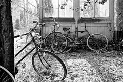 Old bikes, Netherlands Royalty Free Stock Image